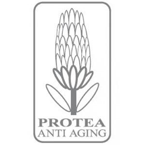 logo_protea
